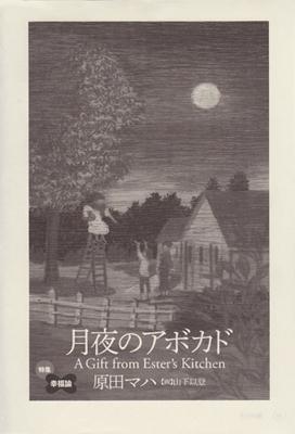 月夜のアボカド